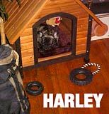 SHARLLE-HARLEY in his new home